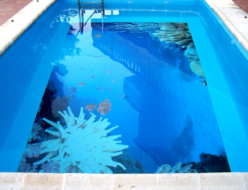 Vinilo decorativo en piscina